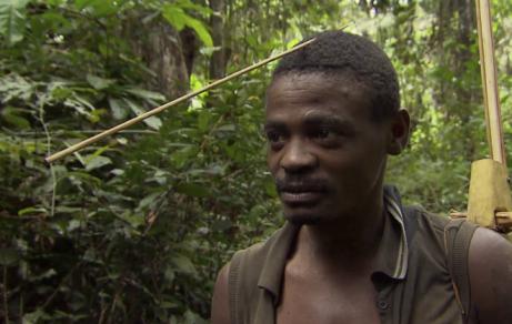 Gabon : La Grande Foret